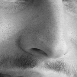 Homme : le nez